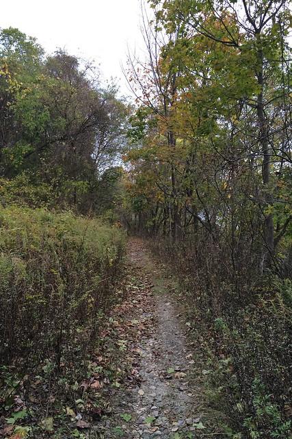 日, 2014-10-26 15:02 - Jones Pointの旧道