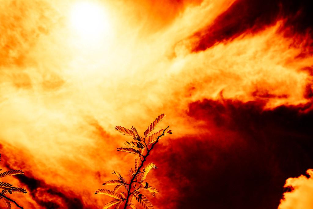 Lua de Sol ou Sol de Lua - Red