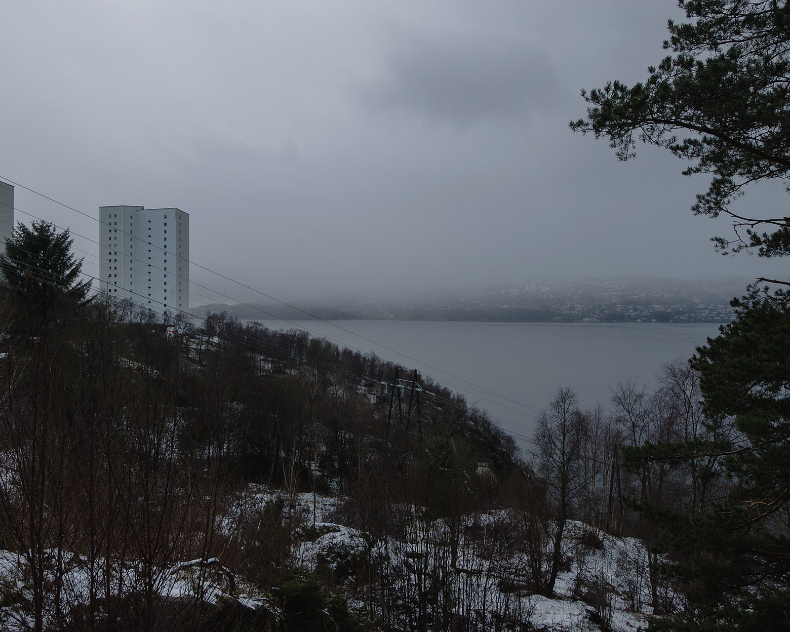 Apartment building, grey sky, naked trees, view over fjord and island in the distance.