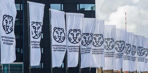 IFFR, Rotterdam
