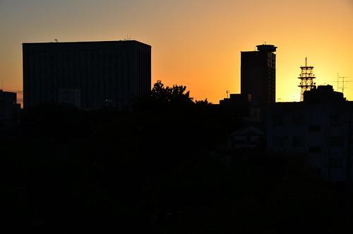autumn sunset silhouette japan october 日本 okayama 2014 岡山県 10月 十月 岡山市 神無月 kannazuki 中国地方 okayamacity okayamaprefecture chūgoku かんなづき themonthwhentherearenogods 平成26年