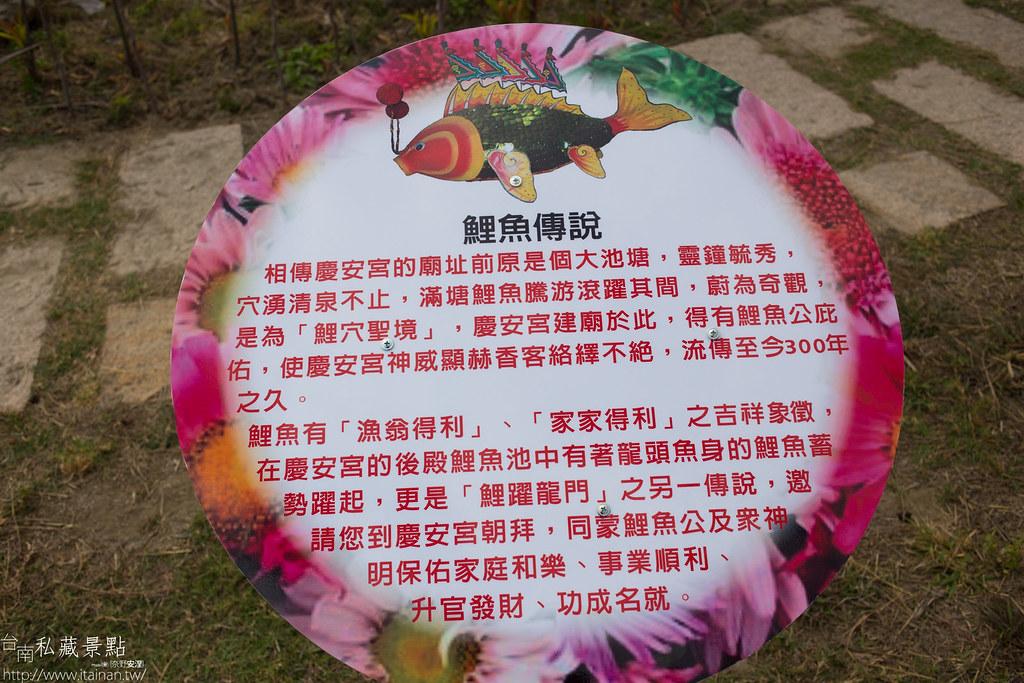 台南私藏景點-西港中央公園 (10)