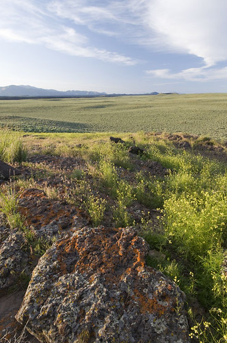This area, known as the Pioneers-Craters landscape, has been identified as a conservation priority in Idaho by numerous studies, planning efforts and conservation organizations. Photo by Bill Mullins, Wood River Land Trust.