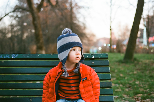 Will ektar park bench-1