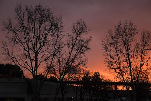 trees sunset red sky silhouette clouds warm glow fuji riverside vibrant handheld fujifilm southerncalifornia apsc xt1 mirrorless xshooter xmount xflens xtranssensor 18135oiswr
