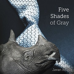 Which shade of gray is your #Valentine? Is she a rare find? Does she like to play hard to get? Will she not be tamed? Then maybe she's just like a Javan #rhino! Dominate this Valentine's Day and submit to your love for the five species of rhino. Cuff your