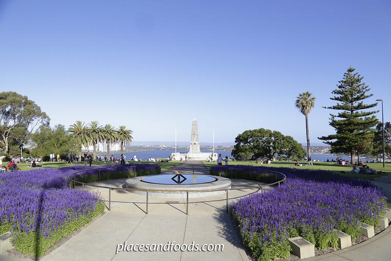 day 4 kings park lavender