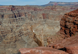 Grand Canyon West Rim.  Guano Point