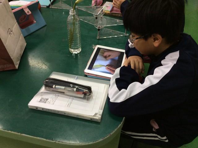 學生用iPad觀察花和果實01