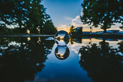 Reflection | GlassBallProject #238/365