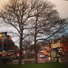 Wood Street, Lytham  St Annes #lythamstannes #trees #urban