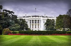 'White House'