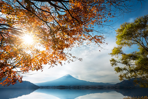 morning travel autumn winter red sky mountain lake snow plant tree fall leave tourism nature water beautiful yellow japan river garden season landscape japanese volcano tokyo leaf maple scenery asia day fuji mt view background scenic mount fujisan copyspace kawaguchiko yamanashiken minamitsurugun