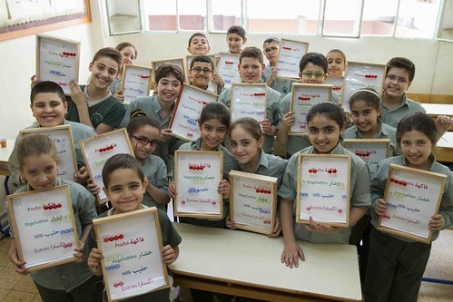 Lebanon – healthy eating lessons in the national school curriculum