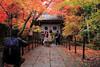 Photo:粟生光明寺-komyo-ji (藥醫門) By 歲月之歌