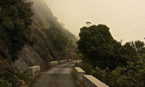 Eravikulam National Park pathways