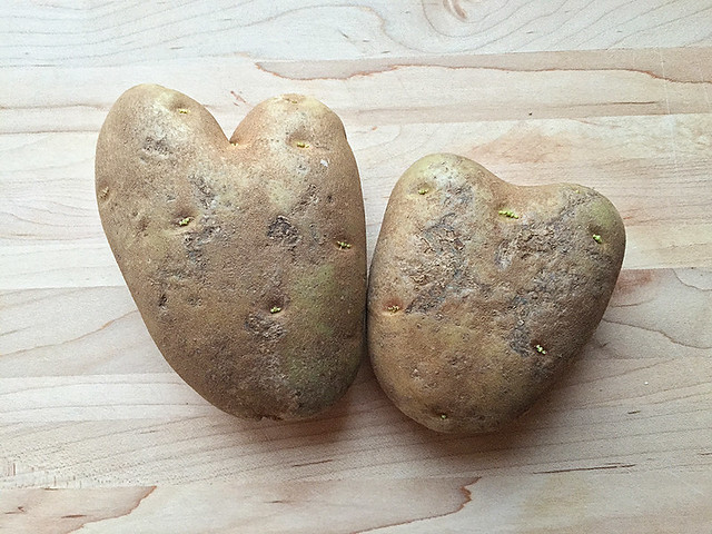 Love Taters