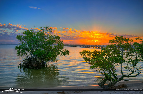 sunrise florida mangrove topaz martincounty jensenbeach indianriverlagoon photomatixpro hdrphotography indianriversidepark captainkimo
