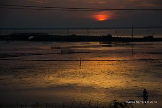 Jaffna. Puesta  de sol desde el fuerte.  Sunset from the fort.