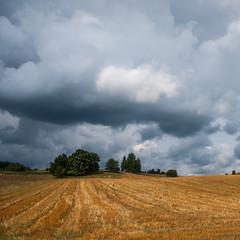 Poland - Podlasie - The Bug River Valley