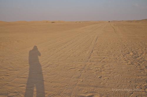 【写真】2014 世界一周 : ドバイ・砂漠(1日目)/2014-12-17/PICT6682