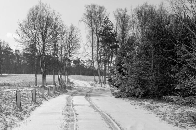 The snow idyll