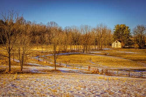 winter snow nature field fence landscape gold nikon unitedstates pennsylvania wildlife pert brynathyn pennypack pennypackecologicalrestorationtrust