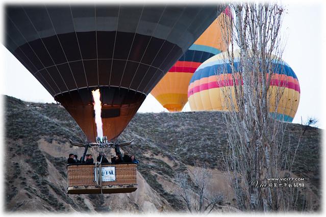 1204卡帕熱氣球010