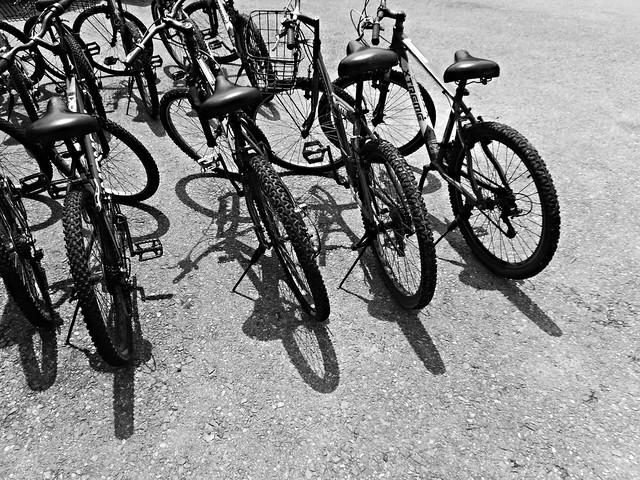 Bicycles Pulau Ubin, Fujifilm FinePix XP50