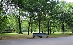 Regent's Park Bench