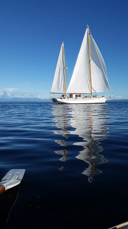 Spin Sailing