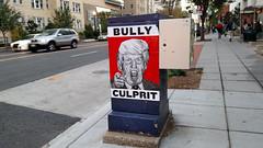 Bully Culprit