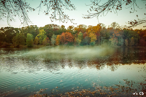 park travel trees sunset sky mist lake nature water leaves fog forest landscape prime sony maryland wideangle greenbelt nex greenbeltlake mirrorless