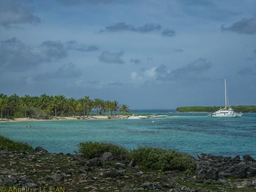 mer vert bateaux bleu paysages antilles petiteterre caraïbes