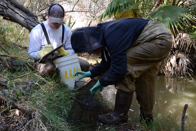 two people tallying crayfish catch data by a creek