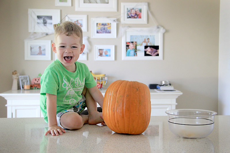 28 October 2014- Pumpkin Carvin'003