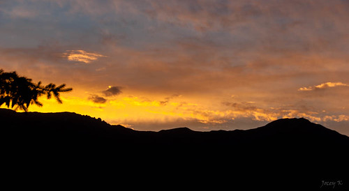 sunset newzealand lake mountains tree hills southisland centralotago wanaka tripdownsouth