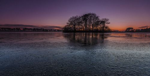 trees sunset ice water scotland angus monikie tayside reservior