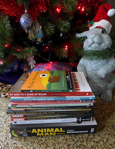 My Christmas book haul.