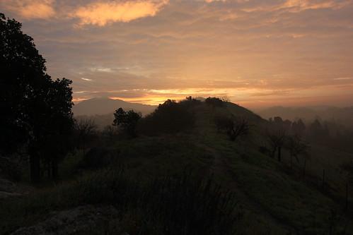 california trees orange mountain fog clouds sunrise canon outside path hills mountdiablo shellridgeopenspace pathscaminhos