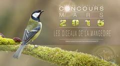Concours Photo Mars 2015