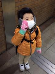 冬のあったか装備とらちゃん 2014/12