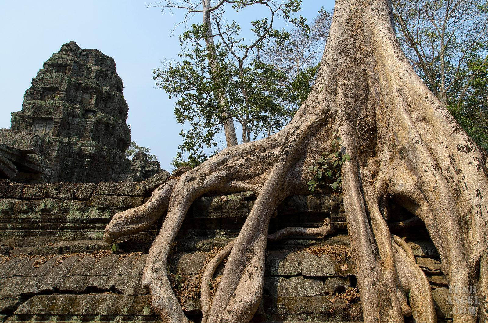 cambodia-siem-reap-20