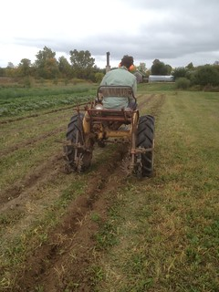 Ripping Furrows