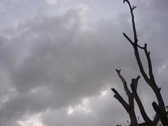 Monsoon clouds ☁☁☁