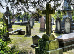 Cathays Cemetery, Cardiff [6]
