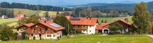 Birkenthal, Bayerischen Wald, Deutschland