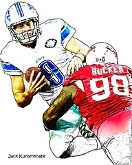 Arizona Cardinals Frostee Rucker - Detroit Lions Matthew Stafford