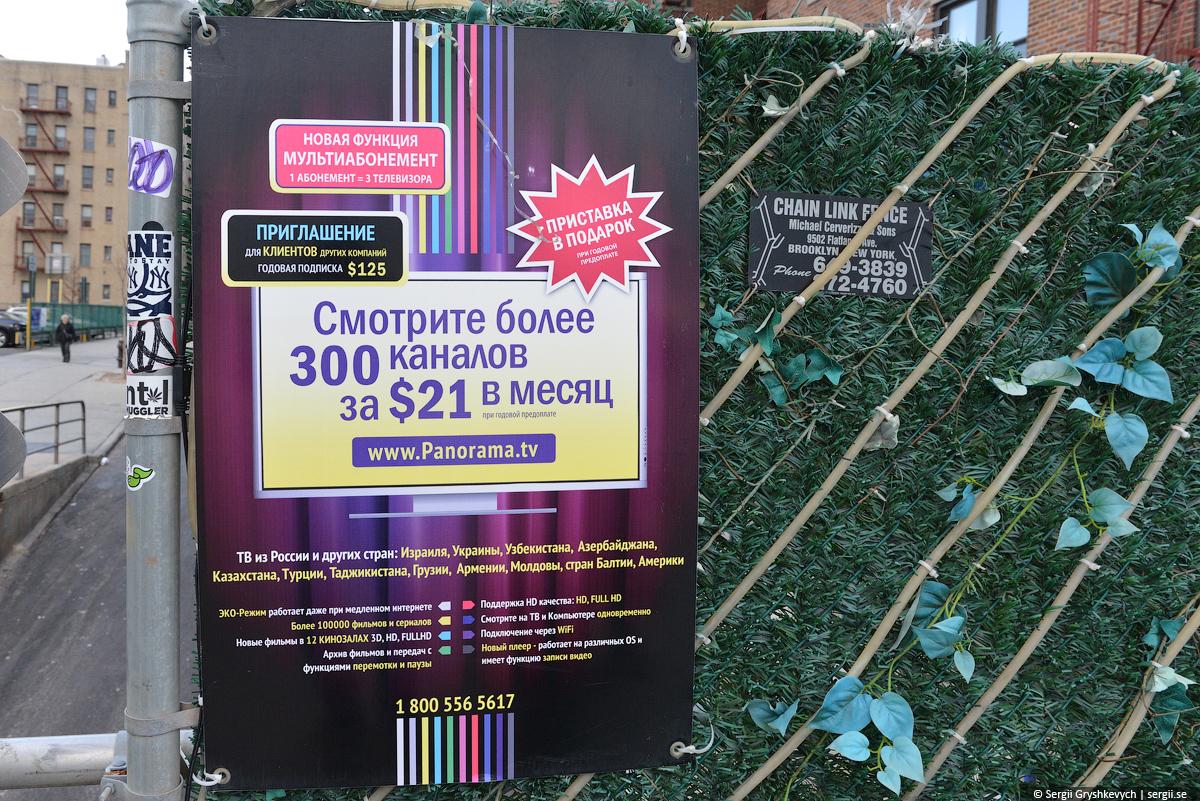 DSC_7505