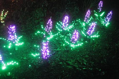 Garden d'Lights